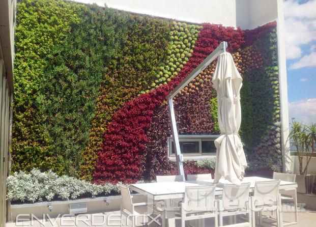 Im genes de enverde for Riego jardin vertical