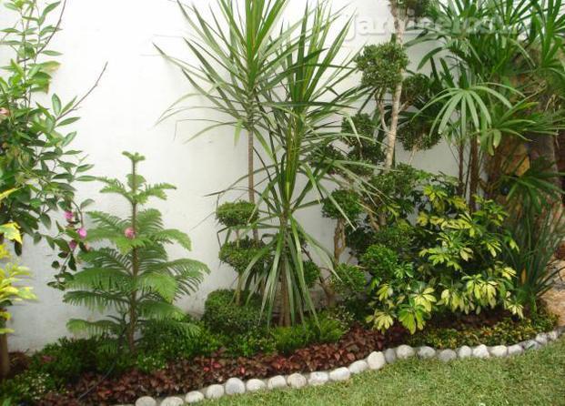 Im genes de bioambientes dise o y cuidado de jardines - Cuidado de jardines ...