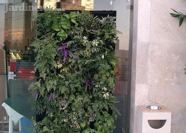 Im genes de jardines verticales arte verde decorativo for Jardines verticales precios
