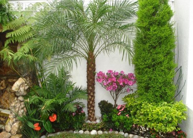 Im genes de jardiner a viveros for Jardineria leon