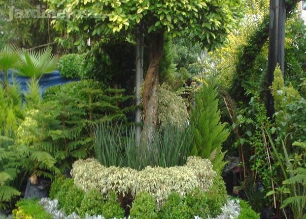 Im genes de jardiner a viveros for Imagenes de jardineria gratis