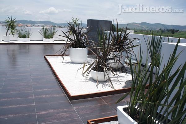 Azoteas verdes hasta el techo de verdor for Jardin en azotea diseno
