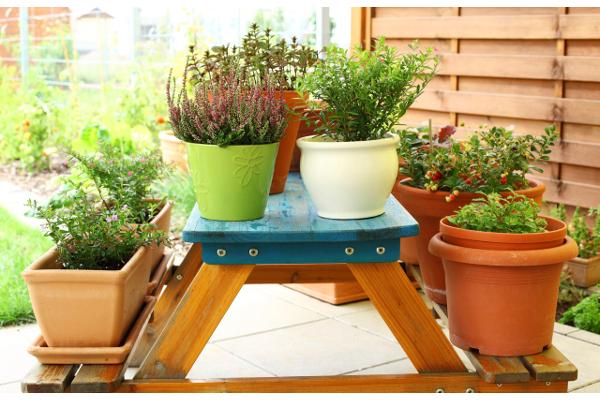 Decoraci n con macetas y flores en el hogar for Decoracion de patios con macetas