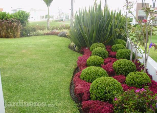 Dise os de jardines verdes pictures to pin on pinterest - Disenos de jardines ...