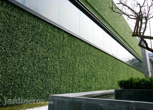 im genes de muros decorativos y jardines verticales