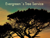 Evergreen´s Tree Service