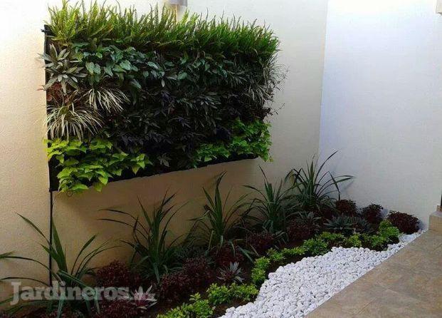 im genes de jardineria vertical slp