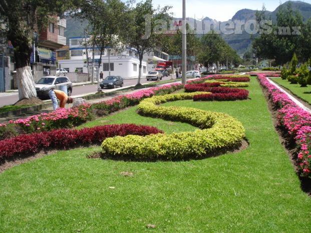 Im genes de viveros zona verde morelos for Viveros en queretaro