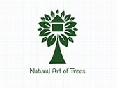 Natural Art of Trees
