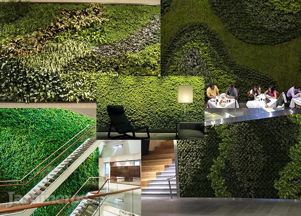 Fotos de muros verdes y plantas artificiales baratas for Diseno de muros verdes