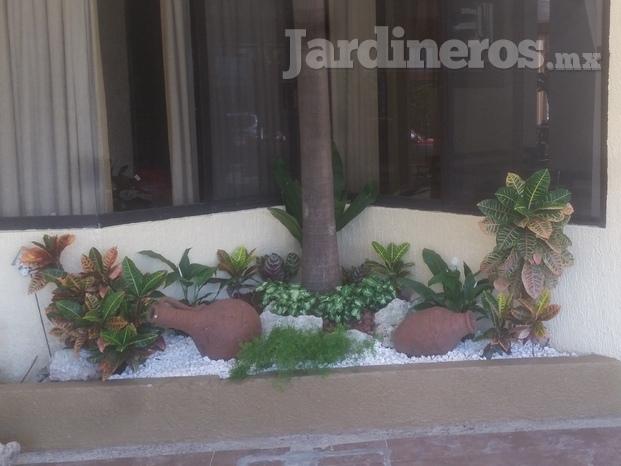 Viveros y jardines fortin for Viveros y jardines
