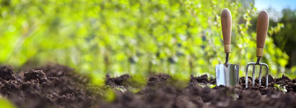 Jardineros for Jardineria queretaro